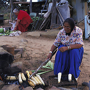 """Lortia Addakai grills ears of corn as katherine Smith sorts through her field's harvest.  """"Our songs and our prayers are tied to this place,"""" says Smith, who counts herself a resistor to relocation."""