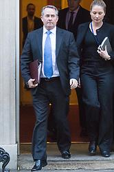 Downing Street, London, November 29th 2016. International Trade Secretary Liam Fox leaves 10 Downing Street following the weekly cabinet meeting.