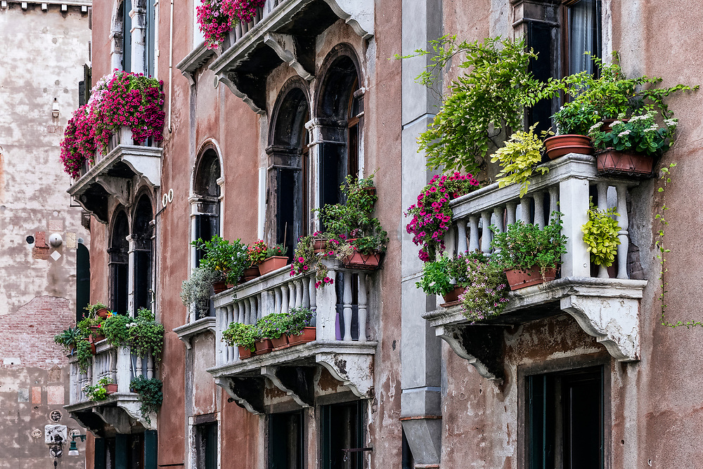 Flowers and plants adorn the Venetian balconies, venice, Italy
