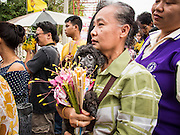 "22 JULY 2013 - PHRA PHUTTHABAT, THAILAND: A woman and her dog wait to present flowers to monks during the Tak Bat Dok Mai at Wat Phra Phutthabat in Saraburi province of Thailand, Monday, July 22. Wat Phra Phutthabat is famous for the way it marks the beginning of Vassa, the three-month annual retreat observed by Theravada monks and nuns. The temple is highly revered in Thailand because it houses a footstep of the Buddha. On the first day of Vassa (or Buddhist Lent) people come to the temple to ""make merit"" and present the monks there with dancing lady ginger flowers, which only bloom in the weeks leading up Vassa. They also present monks with candles and wash their feet. During Vassa, monks and nuns remain inside monasteries and temple grounds, devoting their time to intensive meditation and study. Laypeople support the monastic sangha by bringing food, candles and other offerings to temples. Laypeople also often observe Vassa by giving up something, such as smoking or eating meat. For this reason, westerners sometimes call Vassa the ""Buddhist Lent.""     PHOTO BY JACK KURTZ"