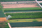 Vegetable fields under irrigation. Amyndeon Amindeo region, Macedonia, Greece