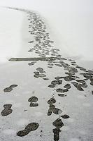 Snowy footprints New Hampshire.  ©2016 Karen Bobotas Photographer