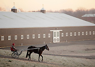 Town of Wallkill, New York  - A trainer drives a harness racing horse down to the track on a cold morning at the Mark Ford Training Center on  Dec.12, 2011.