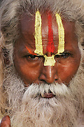 A Sadhu (Hindu ascetic) at the Kumbh Mela festival in Ujjain, Madhya Pradesh, India. The Kumbh Mela festival is a sacred Hindu pilgrimage held 4 times every 12 years, cycling between the cities of Allahabad, Nasik, Ujjain and Hardiwar.  Participants of the Mela gather to cleanse themselves spiritually by bathing in the waters of India's sacred rivers.  Kumbh Mela is one of the largest religious festivals on earth, attracting millions from all over India and the world.  Past Melas have attracted up to 70 million visitors.