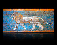 """Coloured glazed terracotta brick panel depicting striding lions from Babylon (Iraq). Neo-Babylonian Period, reign of Nebuchadnezzar II 604-562 BC. This panel belonged to the tiled decorated walls either side of the Processional Way in Babylon which was 3280 ft (1km) long. It led from the temple of Marduk, through the Ishtar Gate to the temple of Akitu. The lion is the is associated with the Babylonian goddess Ishtar. T processional Way played a key role in the  New Year festival which was held in the spring equinox. Babylonian Gods were believed to leave their temples on this day and visit the god Marduk in his temple in Babylon. Kings like Nebuchanezzar would have played an important role in this procession and they aside their regal regalia for the procession and recited """"negative confessions"""" as they preceded down the Processional way. Inv Ao 21118, The Louvre Museum, Paris. .<br /> <br /> If you prefer to buy from our ALAMY PHOTO LIBRARY  Collection visit : https://www.alamy.com/portfolio/paul-williams-funkystock/babylon-antiquities.html    Type -     Louvre   - into the LOWER SEARCH WITHIN GALLERY box to refine search by adding background colour, place, museum etc<br /> <br /> Visit our ANCIENT WORLD PHOTO COLLECTIONS for more photos to download or buy as wall art prints https://funkystock.photoshelter.com/gallery-collection/Ancient-World-Art-Antiquities-Historic-Sites-Pictures-Images-of/C00006u26yqSkDOM"""