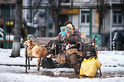 A homeless woman relaxing with a book in the company of her two dogs during a February afternoon in the central area of Sofia.<br /> <br /> Sofia, Bulgaria<br /> February 2010
