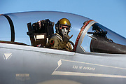 """F-15 Hawaii Air Guard version of thumbs up:.""""No Ka Oi"""" symbol.  Not released."""