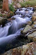 Stream near the outlet of Half Moon Lake, Desolation Wilderness, Tahoe Sierra Nevada mountains, California
