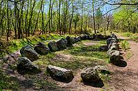 France, Morbihan (56), Néant-sur-Yvel, le site du Jardin aux Moines dans la foret de Broceliande // France, Morbihan (56), Néant-sur-Yvel, the site of the garden at the monks in the Forest of Broceliande