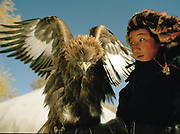 Bazer Bai, 14 years old, shows his eagle. Eagle Hunting festival in Western Mongolia, in the province of Bayan Olgii. Mongolian and Kazak eagle hunters come to compete for 2 days at this yearly gathering. Mongolia, October 2006