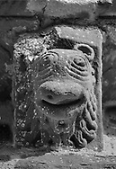 The Stone Bestiary - Black and white photo art print of Norman Romanesque exterior corbel no 17 - sculpture of the head of an animal with a lions mane and beak shaped wide mouth. The Norman Romanesque Church of St Mary and St David, Kilpeck Herefordshire, England. Built around 1140 .<br /> <br /> Visit our LANDSCAPE PHOTO ART PRINT COLLECTIONS for more wall art photos to browse https://funkystock.photoshelter.com/gallery-collection/Places-Landscape-Photo-art-Prints-by-Photographer-Paul-Williams/C00001WetsxVxNTo