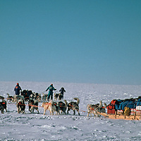 Dog teams from the 1989-1990 Trans-Antarctica Expedition navigate across the vast polar plateau near the South Pole,