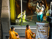 """29 NOVEMBER 2016 - BANGKOK, THAILAND: Buddhist monks walk past a restaurant in a tourist hotel on their way to a special """"tak bat"""" or merit making ceremony. The tak bat was to honor Bhumibol Adulyadej, the Late King of Thailand. Food and other goods were given to the monks, who in turn gave the items to charities that will distribute them to Bangkok's poor. More than 100 Buddhist monks participated in the merit making ceremony. The ceremony was organized by the merchants in the Ratchaprasong Intersection, which includes some of Bangkok's most upscale shopping centers.      PHOTO BY JACK KURTZ"""