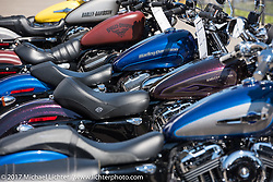 A row of new Harley-Davidson Sportsters basking in the sunlight at the Harley-Davidson Display located at the Daytona Speedway during Daytona Bike Week. Daytona Beach, FL. USA. Wednesday March 15, 2017. Photography ©2017 Michael Lichter.
