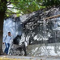 Toluca, México (Mayo 13, 2017).- En la calle de Leona Vicario, entre Independencia y Primero de Mayo, fueron plasmados unos singulares murales que revistieron la madera carcomida de viejos portones y las paredes de casonas en abandono. Se trata de la técnica conocida como fotograma a fotocopia, implementada por artistas mexiquenses. Agencia MVT / Arturo Hernández.