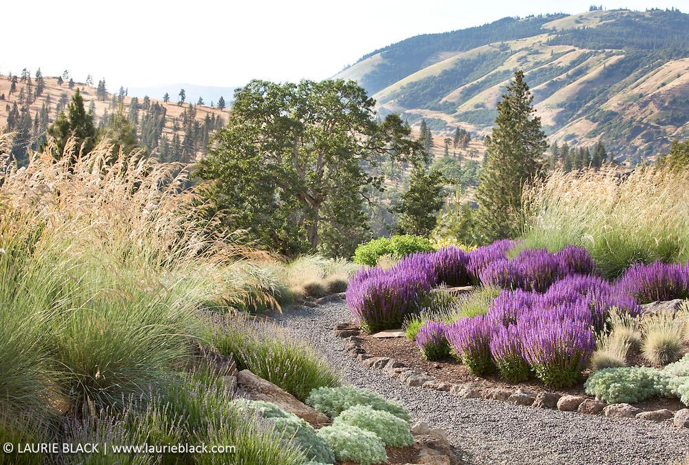 Columbia Gorge garden