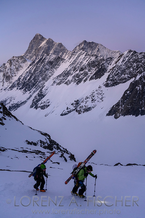 Zwei Skibergsteiger im Aufstieg durch das 900 Meter hohe Südwand-Couloir am Lauteraarhorn mit dem Finsteraarhorn und Agasszizhorn am Horizont, Berner Oberland, Schweiz<br /> <br /> Two ski mountaineers ascending through the 900-meter-high south-facing Couloir on the Lauteraarhorn with Finsteraarhorn and Agasszizhorn on the horizon, Bernese Oberland, Switzerland