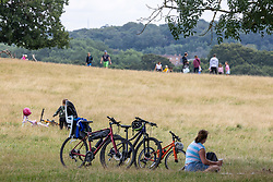 Licensed to London News Pictures. 29/08/202. London, UK. Walkers enjoy a Bank Holiday stroll in the warm sunshine with highs of 23c in Richmond Park, southwest London today. Weather forecaster predict that the mild weather will continue for the weekend and throughout next week with highs of 22c expected. Photo credit: Alex Lentati/LNP