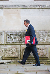 Secretary of State for International Trade Liam Fox arrives at 10 Downing Street to attend the weekly cabinet meeting.