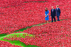 London, August 5th 2014. Prince William and Kate the Duke and Duchess of Cambridge Accompanied by Prince Harry visit the Tower of London poppies installation as part of events marking the centenary of World War 1.