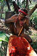 Siba Himan and his wife Amuloke Walelo prepare the day's vegetables with the blood-red juice of the buah merah fruit, Soroba, Baliem Valley, Irian Jaya, Indonesia. Siba wears a traditional penis gourd. Image from the book project Man Eating Bugs: The Art and Science of Eating Insects.
