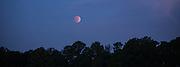 Lunar eclipse just before dawn