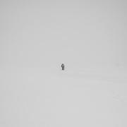 Trekking on the Foxfonna Glacier, Spitsbergen, Svalbard