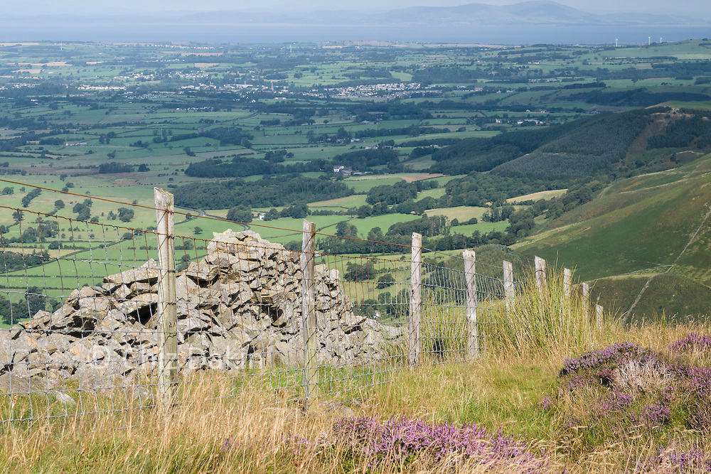 View down Swinside and across to the Solway Firth from lower section of Ladyside Pike