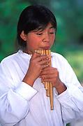 ECUADOR, COLONIAL musician with 'Zampona' panpipes