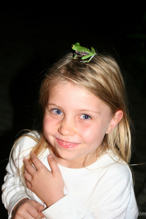 Central America, Costa Rica, Osa. A Red-Eyed Tree Frog sits on child's head.