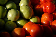 Fresh green and red tomatoes glisten in the morning light at the booth of Nature's Way Farm of Troy, Ill. at the Belleville Old Town Market in downtown Belleville, Ill. Saturday, Aug. 28, 2010. Image © copyright by Sid Hastings.
