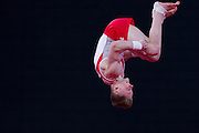 Mcc0055084 . Daily Telegraph<br /> <br /> England's Nile Wilson winning Bronze in the Men's Individual Artistic Gymnastics on Day 7 of the 2014 Commonwealth Games .<br /> <br /> 30 July 2014