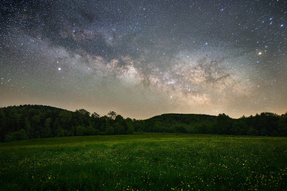 Fire flies rest among the yellow wildflowers under the Milky Way in Tea Creek Meadow along the West Virginia Highland Scenic Highway.