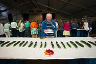 Foto: Gerrit de Heus. Nootdorp. 12-08-2017. Nederlands Kampioenschap (NK) komkommer sorteren.