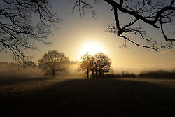 ©Licensed to London New Pictures 10/01/2014. Edenbridge sunrise taken as sun came up throught the early morning frosty mist. Presspics/LNP