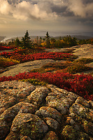 Warm glowing light at sunrise on Cadillac Mountain,  Acadia National Park, Maine, USA