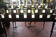 Tourist feet and macabre fish exhibits in display jars  at Museum of Guyanese Culture, Cayenne, French Guiana. .