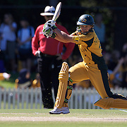 Shelly Nitschke  batting during the match between Australia and Pakistan in the Super 6 stage of the ICC Women's World Cup Cricket tournament at Bankstown Oval, Sydney, Australia on March 16 2009, Australia won the match by 107 runs. Photo Tim Clayton