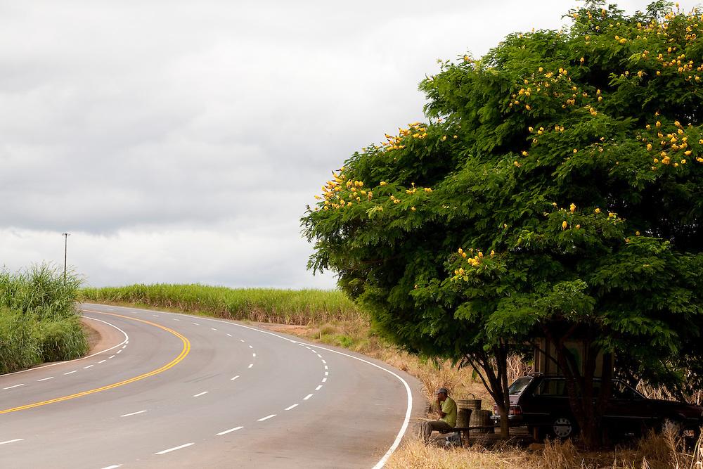 Divisa Nova_MG, Brasil...Comercio informal na BR 491 em Divisa Nova...Informal work in the BR 491 in Divisa Nova...Foto: LEO DRUMOND / NITRO