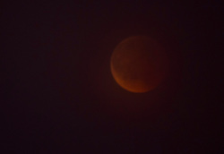 27-07-2018 NED: Bloodmoon, Maarssen<br /> The moon is totally darkened by the shadow of the earth then the moon turns red. We call this a bloodmoon. Unfortunately, it was not visible in Maarssen due to low-lying clouds
