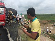 BINZHOU, CHINA - AUGUST 25: (CHINA OUT) <br /> <br /> The driver watches as people living in nearby villages loot chicks after a truck carrying tens of thousands of chicks, which are worth 50,000 yuan (7,800 USD), rolled over on Rongcheng-Wuhai Highway on August 25, 2015 in Binzhou, Shandong Province of China. <br /> ©Exclusivepix Media