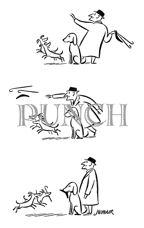 (A man with three dogs throws two canes and a boomerang for them to chase - two dogs run after the canes whilst the other waits for the boomerang to return then catches it in his mouth)