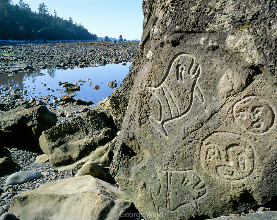 300 Year Old Ozette Indian Petroglyph and Tide Pool at Wedding Rocks, Olympic National Park, Washington