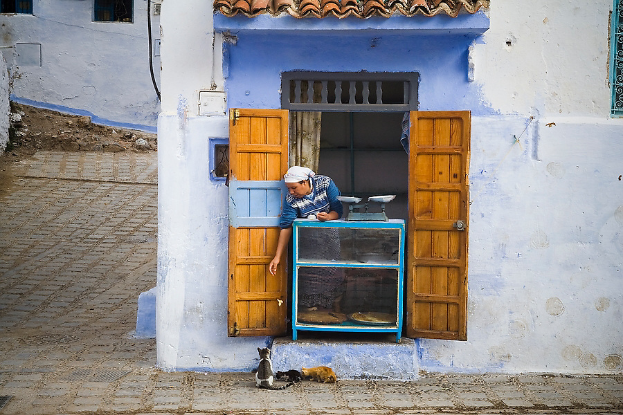 A bread seller leans out to feed cats from her tiny window storefront in Chefchaouen medina, Morocco, on October 28, 2007.
