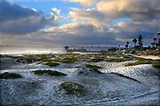 The Coronado Sand Dunes San Diego California