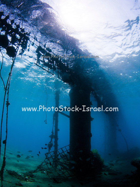 The Israeli naval harbour in Eilat as seen from under water