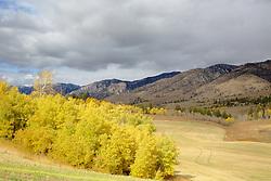 Swan Valley Autumn, Barley Field, Idaho farmland, Snake River Range
