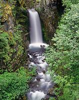 Christine Falls Mount Rainier National Park Washington USA