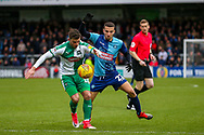 Plymouth Argyle midfielder Graham Carey (10) holds off Wycombe Wanderers midfielder Nick Freeman(22) during the EFL Sky Bet League 1 match between Wycombe Wanderers and Plymouth Argyle at Adams Park, High Wycombe, England on 26 January 2019.