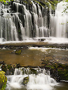 Purukaunui Falls, on the Purukaunui River, The Catlins, South Island, New Zealand